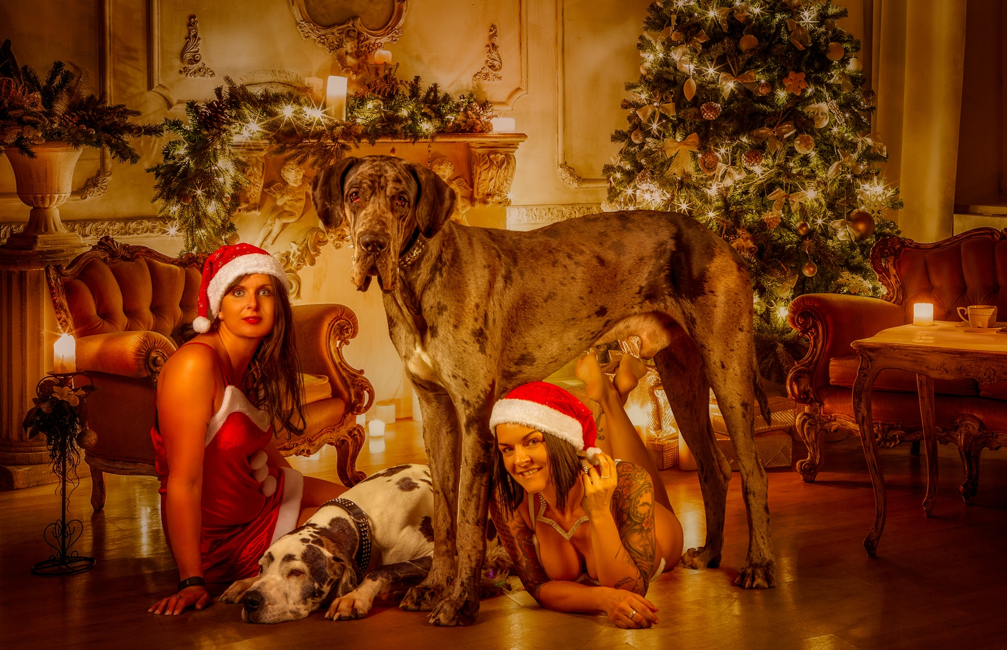 Frohe Weihnachten Fotoshooting