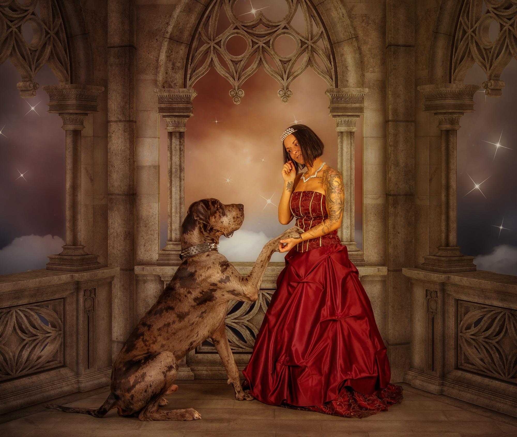 Nachher Fantasy Hunde Composing